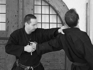 Bujinkan Budo Taijutsu